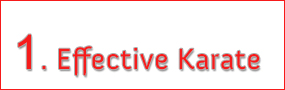 Effectice Karate - Learn more