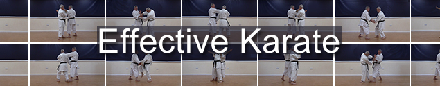 1. Effective training & sparring techniques relevant to all martial artists of any style