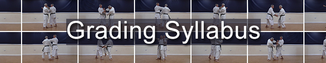 3. Grading soon? We cover the complete IOGKF & EGKA grading syllabus
